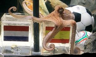 Thus spake Paul the Octopus