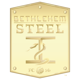 "Photo courtesy of Bethlehem Steel FC.  ""Go gold"" on social media by using this picture as your profile icon to support Pediatric Cancer Foundation of Lehigh Valley's efforts."