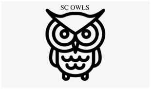 PSP's seven-a-side Draft: SC Owls